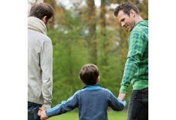 Homoparenatlité Vives réactions à l'amendement Parent 1 / Parent 2