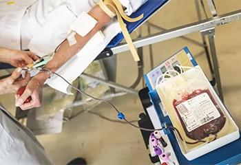 Don du sang : La période d'abstinence des homosexuels réduite d'un an à quatre mois