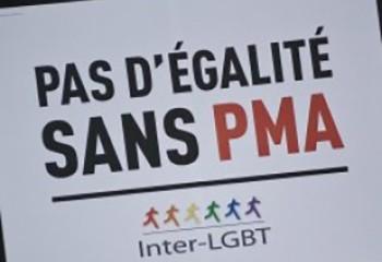 Egalité La PMA pour toutes dans la dernière ligne droite à l'Assemblée